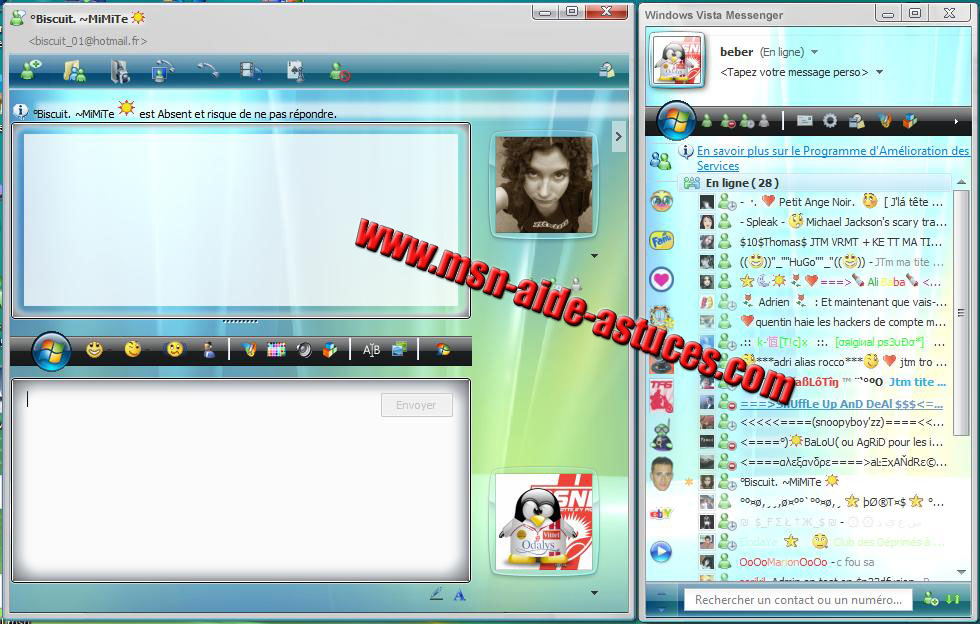 Skin Windows Live Messenger Vista 2.5 1177962001-skinvista
